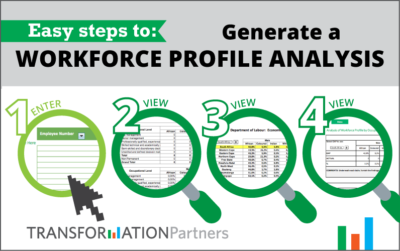 An infographic of a FREE software solution generating a Workforce Profile Analysis.