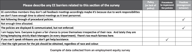 Example of data collected from an employment equity survey