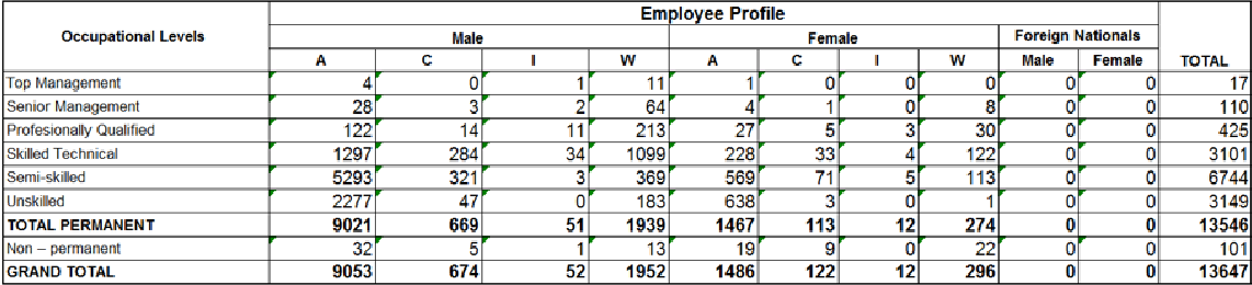 Employment Equity plan table for Occupational Levels Results on Employee Profile